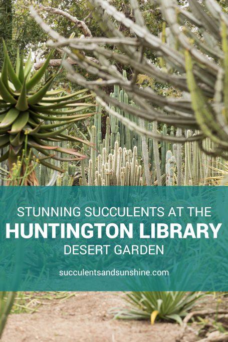 huntington gardens california