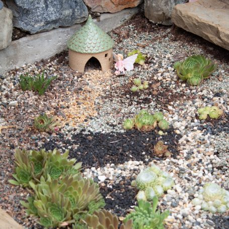 toad house fairy succulent garden cold hardy