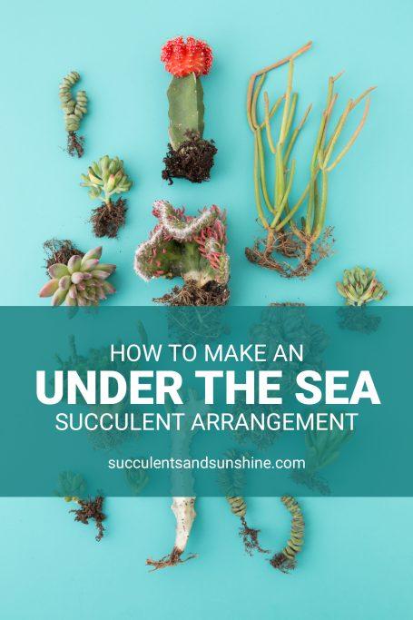 tutorial under the sea arrangement